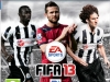 fifa13jaquettenewcastle